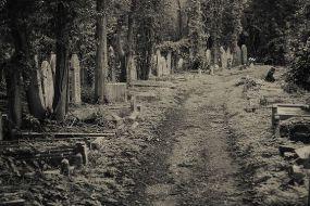 highgate-cemetery-north-london