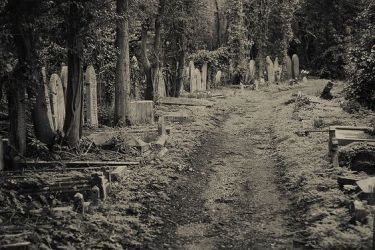 highgate-cemetery-north-london